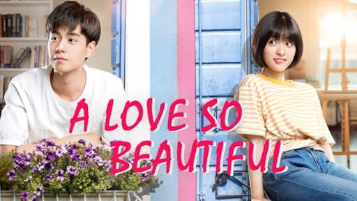 A Love So Beautiful | Netflix