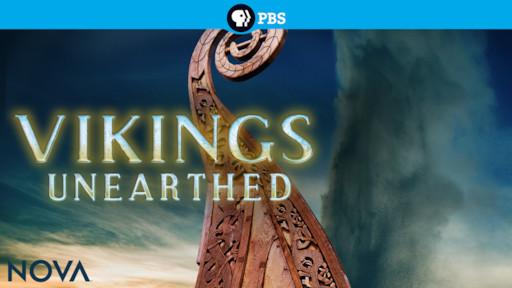 Vikings Unearthed   Netflix
