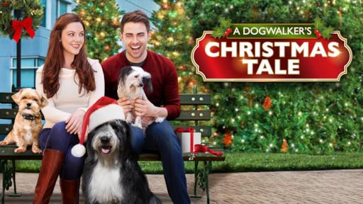 A Christmas Tale.A Dogwalker S Christmas Tale Netflix