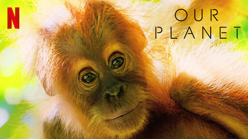 Our Planet | Netflix Official Site